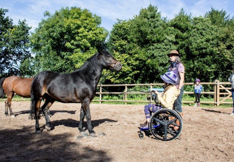 Participants of Hope beyond Hurt – Equine Healing