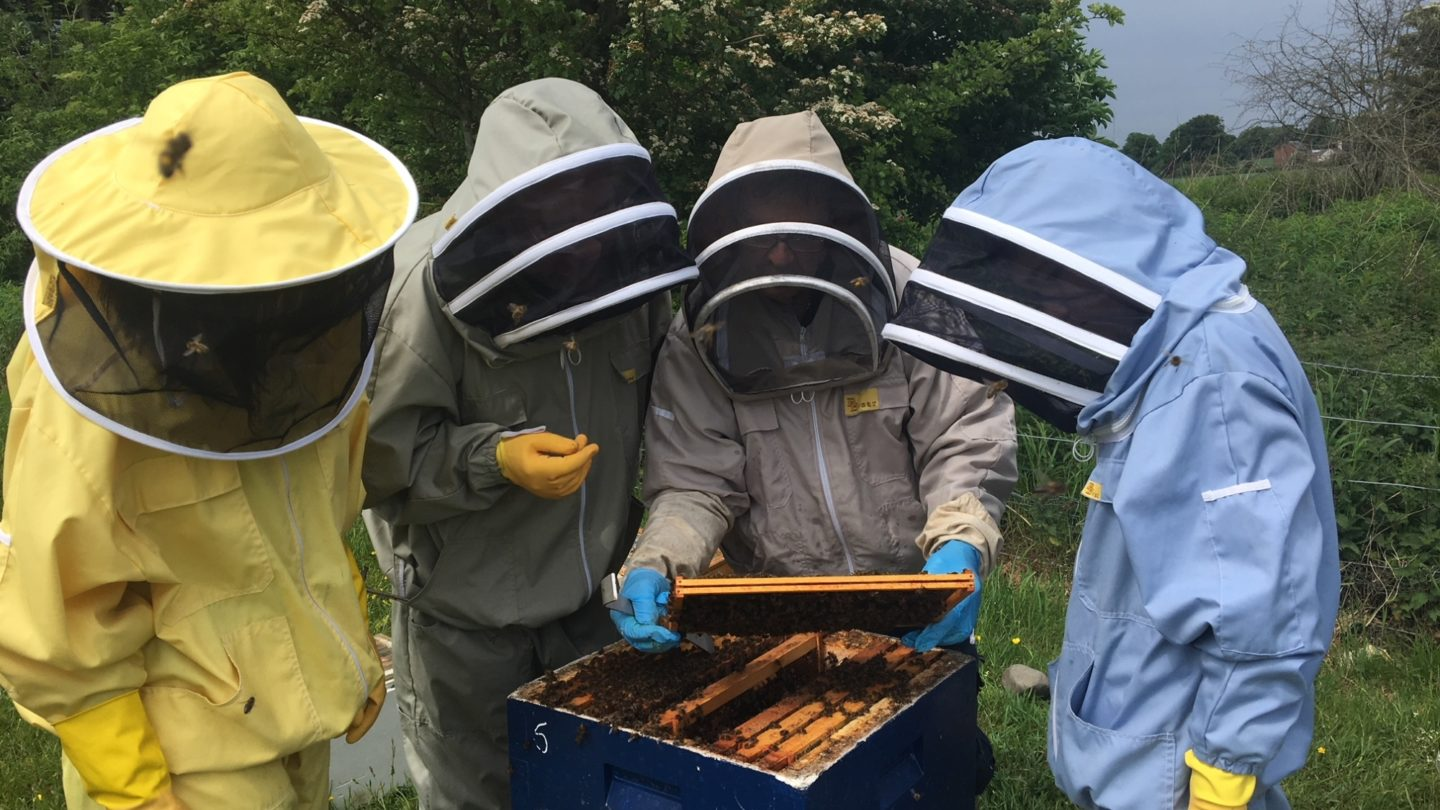Participants of Bee Space - The Beekeepers Community Apiary